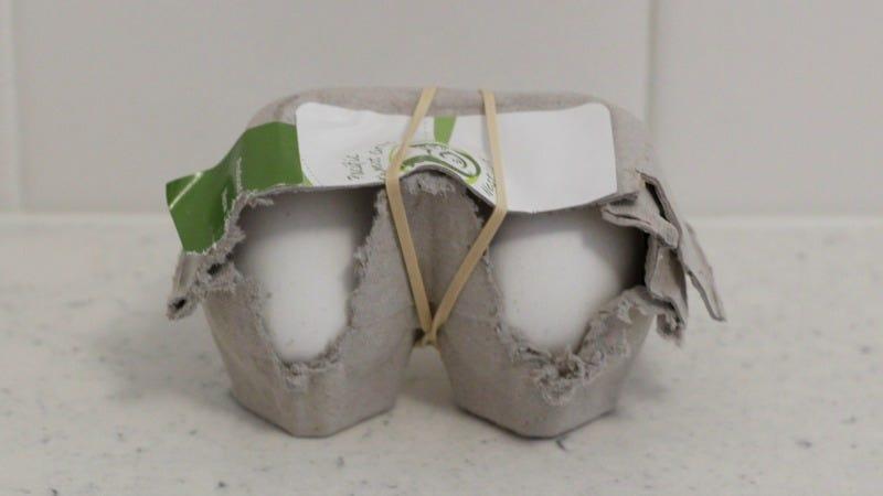 Illustration for article titled Old Egg Cartons Make Great Tiny Egg Transports