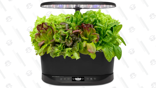 The AeroGarden Is the Perfect Gift for an Eco-Conscious Apartment Dweller and It s 30% off Right Now