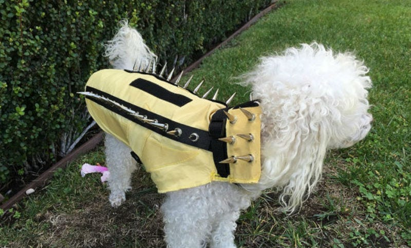 Illustration for article titled Turn Your Dog Into a Punk Porcupine Weapon With This Anti-Coyote Kevlar Vest