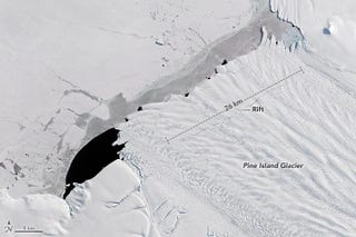 The iceberg that calved from Pine Island Glacier in September, captured by NASA on September 21, just before the break. The photograph shows a rift across the center of the glacier's floating ice shelf. NASA/JOSHUA STEPHENS