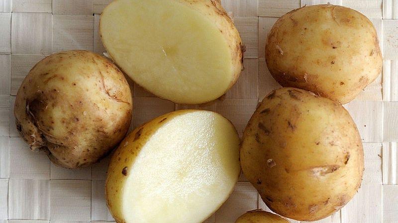Illustration for article titled Por qué esta patata cuesta 500 euros el kilo, la más cara del planeta