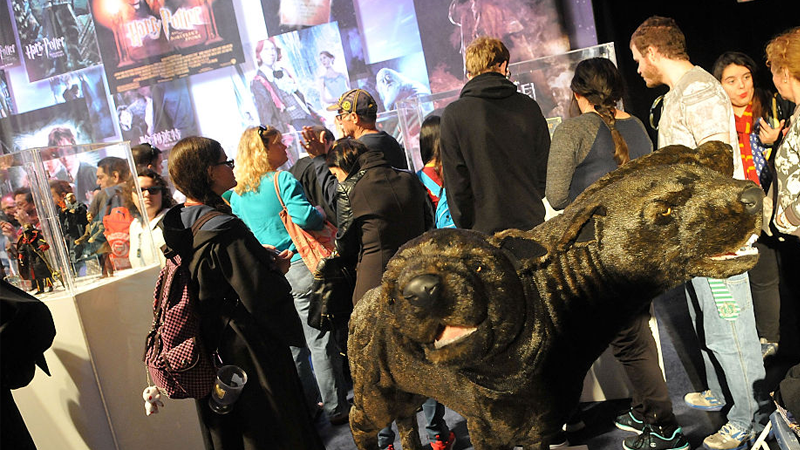 Fans attend Universal's annual exhibition honoring Harry Potter in 2016.