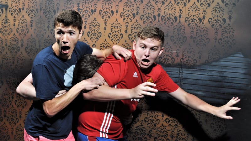 Photo by Nightmares Fear Factory.