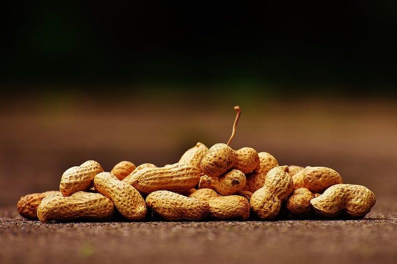 Illustration for article titled Por qué en China, Tailandia o Israel no hay casi nadie alérgico a los cacahuetes