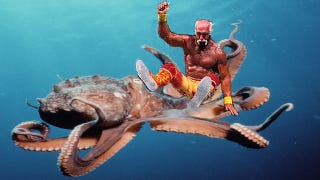 Illustration for article titled Octopus Wrestling, A Sport That Amounted To Cephalopod Home Invasion