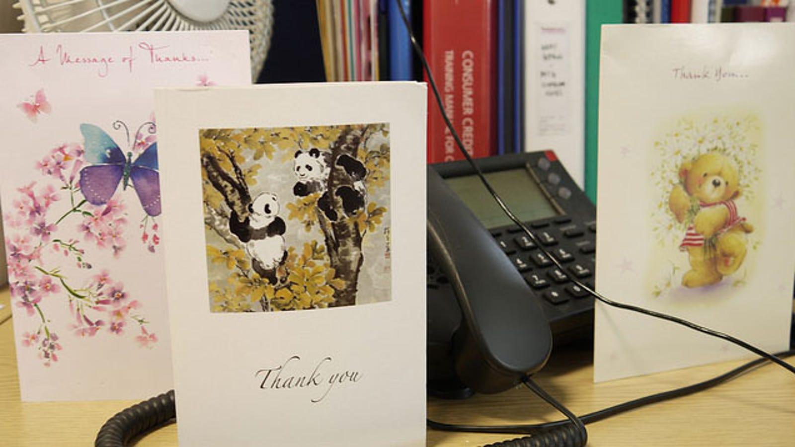 Send A Thank You Letter After A Job Rejection