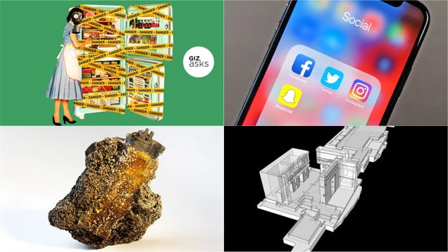 Future Fossils, Thanos  Home World, and the Most Dangerous Food: Best Gizmodo Stories of the Week