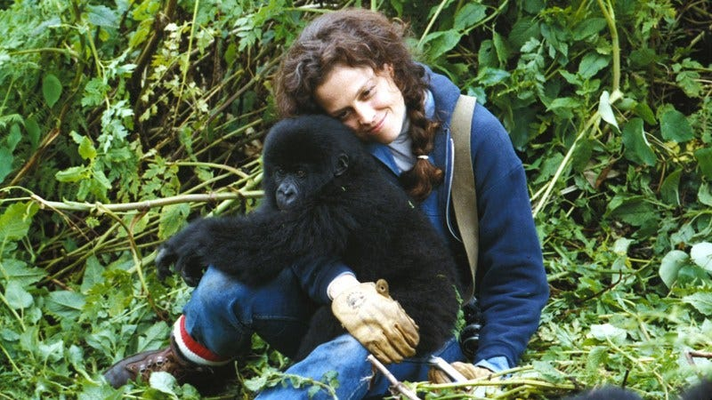 Sigourney Weaver as Dian Fossey in Gorillas In The Mist