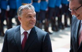 Illustration for article titled Orbán megőszült? Inkább abbahagyta a festetést