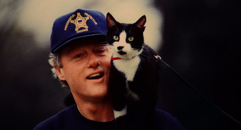Illustration for article titled Bill Clinton's Cat Starred In An Unreleased Video Game (That's Coming Back)