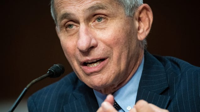 Fauci: At This Rate, We re Headed to 100,000 New Daily Coronavirus Cases