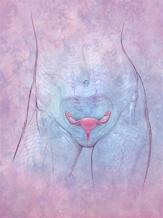 Illustration for article titled Farewell to My Uterus