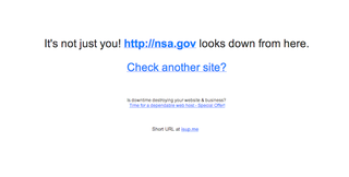 Illustration for article titled The NSA Says an 'Internal Error' Caused Its Outage Not a DDoS Attack