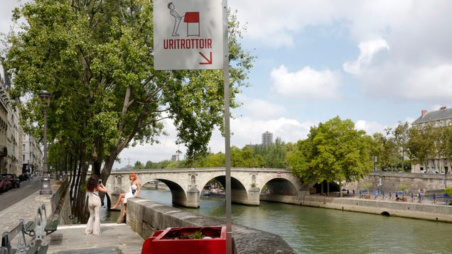 Paris  Solution to Its Public Urination Problem Is Open-Air Piss Boxes