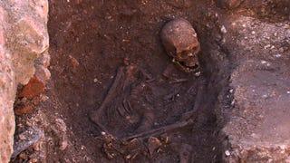 Illustration for article titled Confirman al 99,999% la autenticidad de los restos de Ricardo III