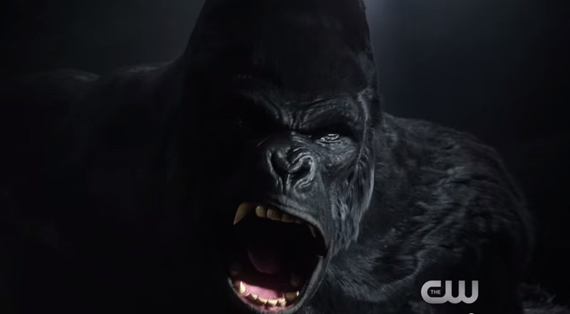 Illustration for article titled This Week's TV: The Flash Battles His Hairiest Foe—Gorilla Grodd!