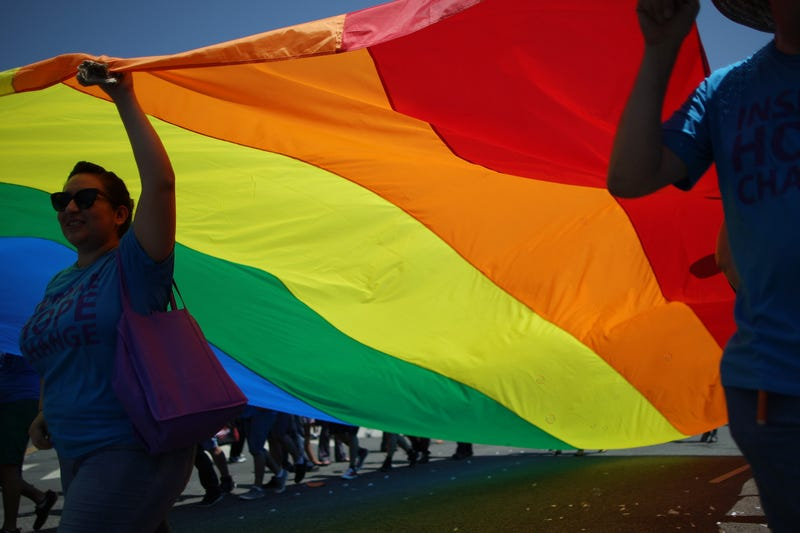 Marchers carry a rainbow flag in the Los Angeles Pride Parade on June 8, 2014, in West Hollywood, Calif. David McNew/Getty Images