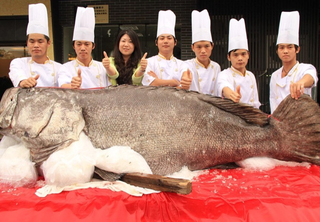Illustration for article titled China's Monster Fish Ends Up in a Cheesy Photo Op