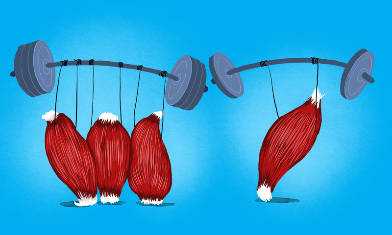 Illustration for article titled Should I Do Full-Body Workouts, or Work One Muscle Group At a Time?