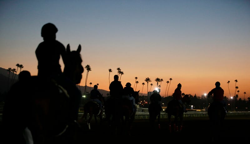 Illustration for article titled They Killed Yet Another Horse At Santa Anita
