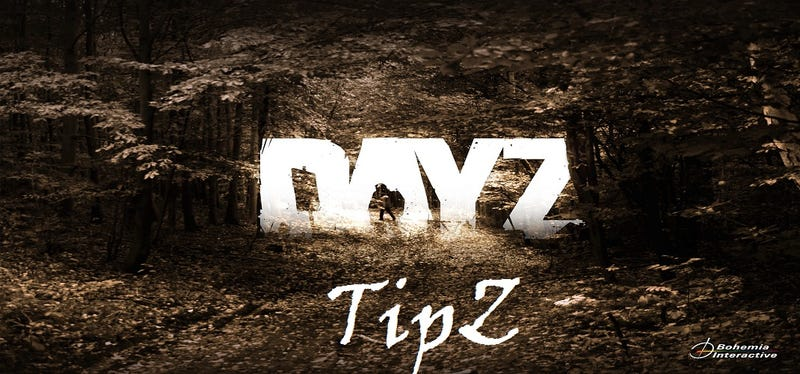 Illustration for article titled DayZ In, DayZ Out: TipZ for Surviving