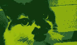 Illustration for article titled A Cat Rendered On A Game Boy, And Other Sweet Demakes You Can Do