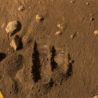 """Illustration for article titled Life On Mars? """"Maybe,"""" Says NASA"""
