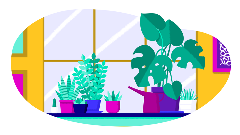 Illustration for article titled How To Actually Keep All Your Plants Alive