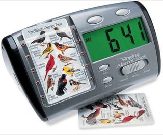 Song Bird Serenade Alarm Clock: Replace the Beep with a Cheep