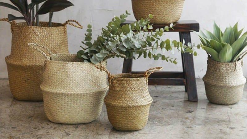 Three-Pack (XL, XXL, XXXL) Seagrass Planter Baskets   $25   Amazon
