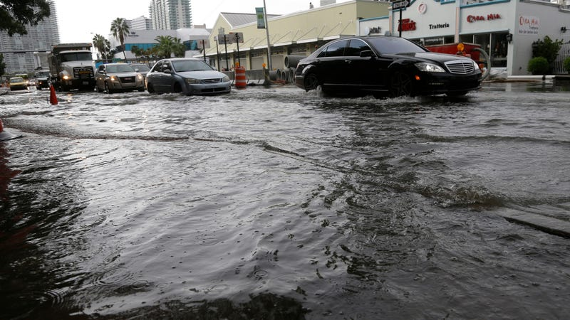 Flooding in Miami Beach, Florida in September 2014. Image: AP Photo/Lynne Sladky