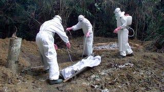 Illustration for article titled Ebolát kíván a bevándorlóknak a francia főfasiszta