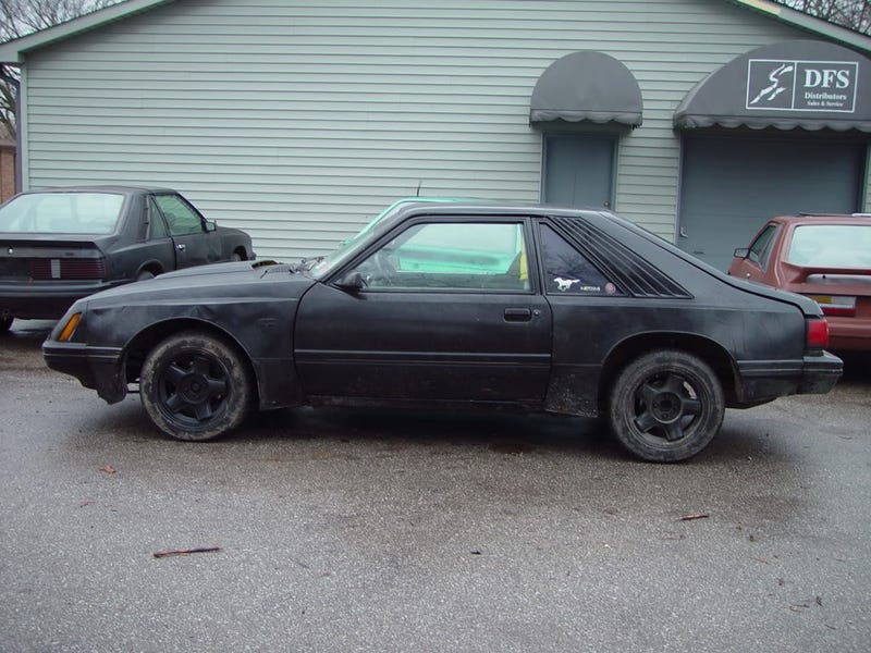 Illustration for article titled Why half of Jalopnik isn't voting Fox body