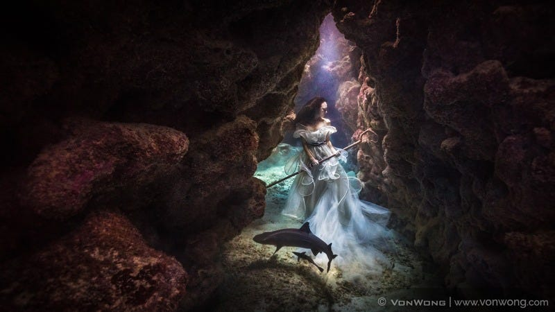 Illustration for article titled This Shark Shepherdess Looks Like She Stepped Out of an Underwater Fairy Tale