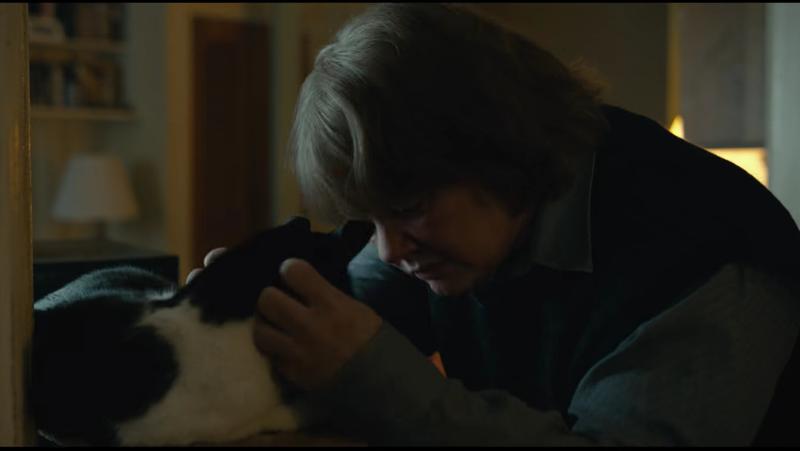 Can a Cat Win an Oscar?