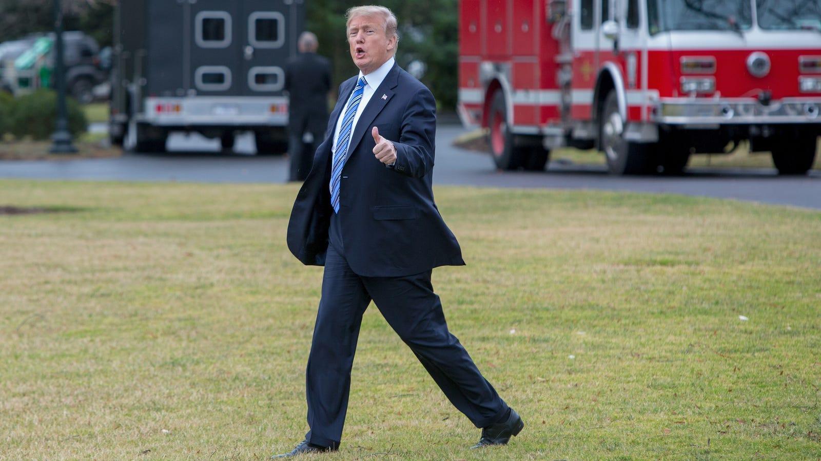 hlkirhrvfiiolihzdxqz - Trump Now Asking His Billionaire Mar-a-Lago Buddies If He Should Do Something About Gun Control