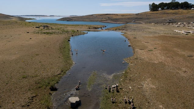 A 56-Year-Old Plane Crash Mystery May Have Been Solved Thanks to California's Drought