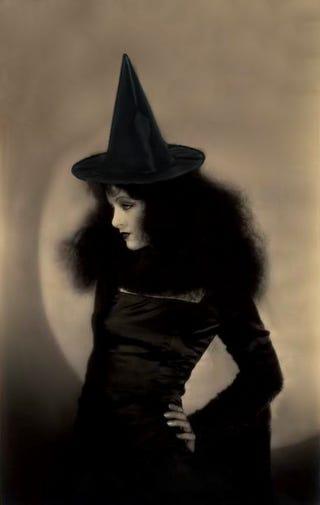 Illustration for article titled Mah Halloweenie Tumblr