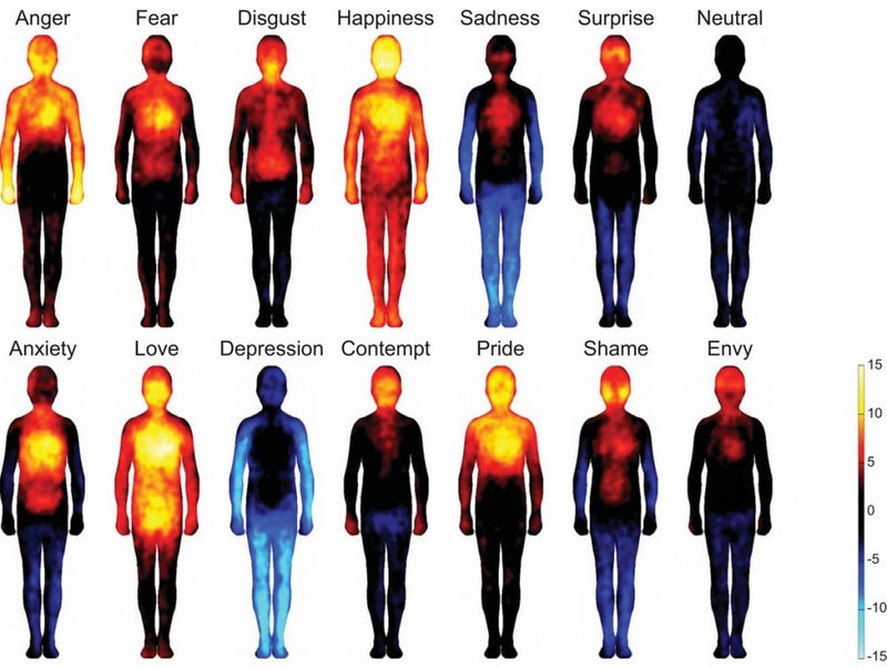 Illustration for article titled Heat maps reveal where you feel emotions in your body
