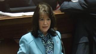 Tennessee state Rep. Sheila ButtWKRN.com screenshot