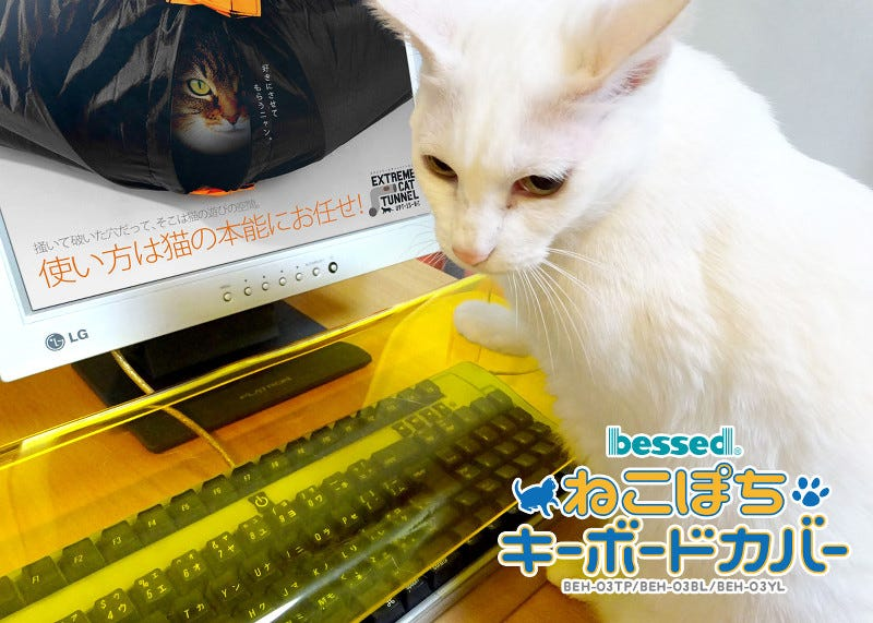 Illustration for article titled Protect Your Keyboard From Cats