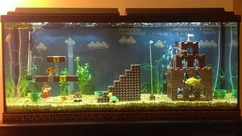 Illustration for article titled Do Fire Flowers Still Work In This Awesome Super Mario Aquarium?