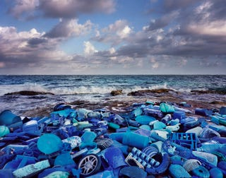 Illustration for article titled Artist's Trash Exhibitions Depict A Planet Colonized By Plastic