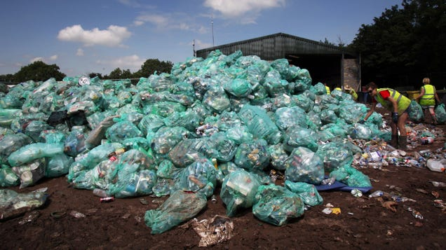 Bioplastic Just as Toxic as Traditional Plastic, Study Finds