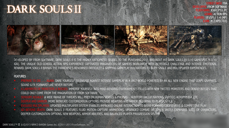Illustration for article titled What Can You Glean From This Dark Souls II Fact Sheet?