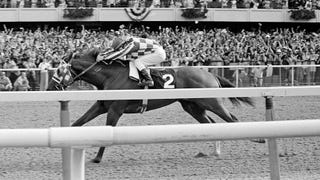 A Little Greedy, And Exactly Right: Red Smith On Secretariat