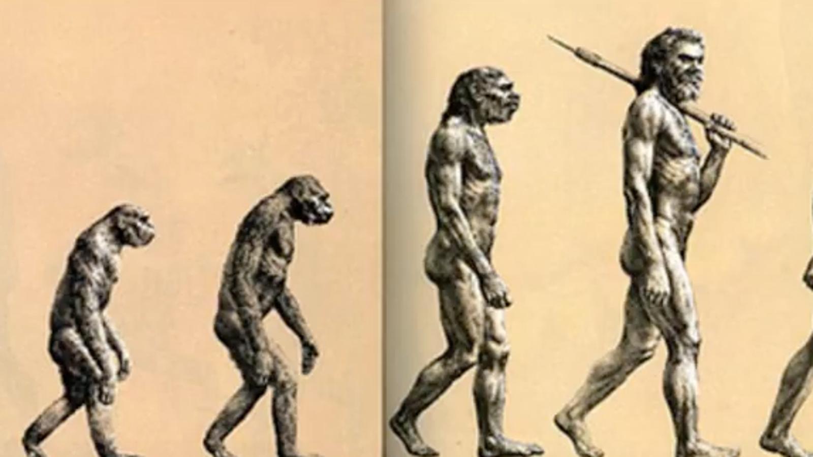 Esta imagen que llevas viendo toda tu vida sobre la evolución humana tiene poco que ver con la realidad
