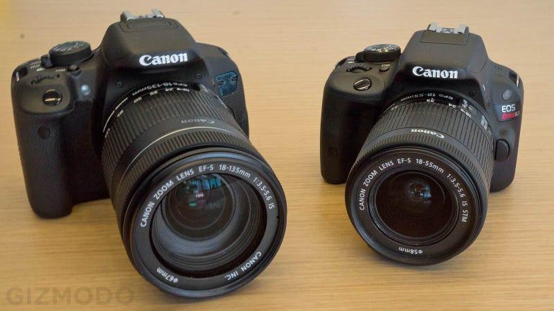 Illustration for article titled Canon EOS Rebel SL1: The Shrunken Down Beginner DSLR You've Been Waiting For