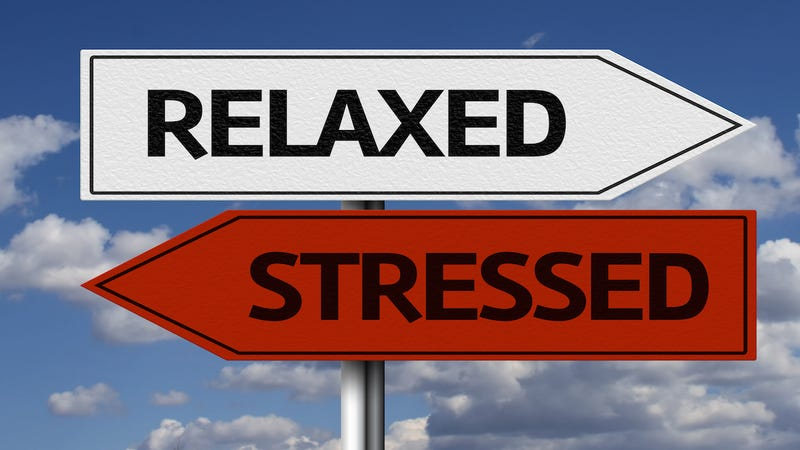 The Busy Person's Guide to Reducing Stress