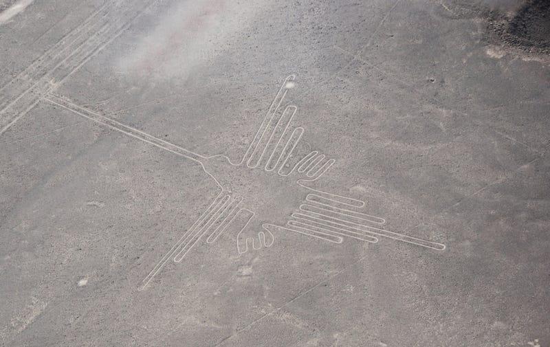 Illustration for article titled Un nuevo estudio revela el significado de 16 geoglifos de las líneas de Nazca